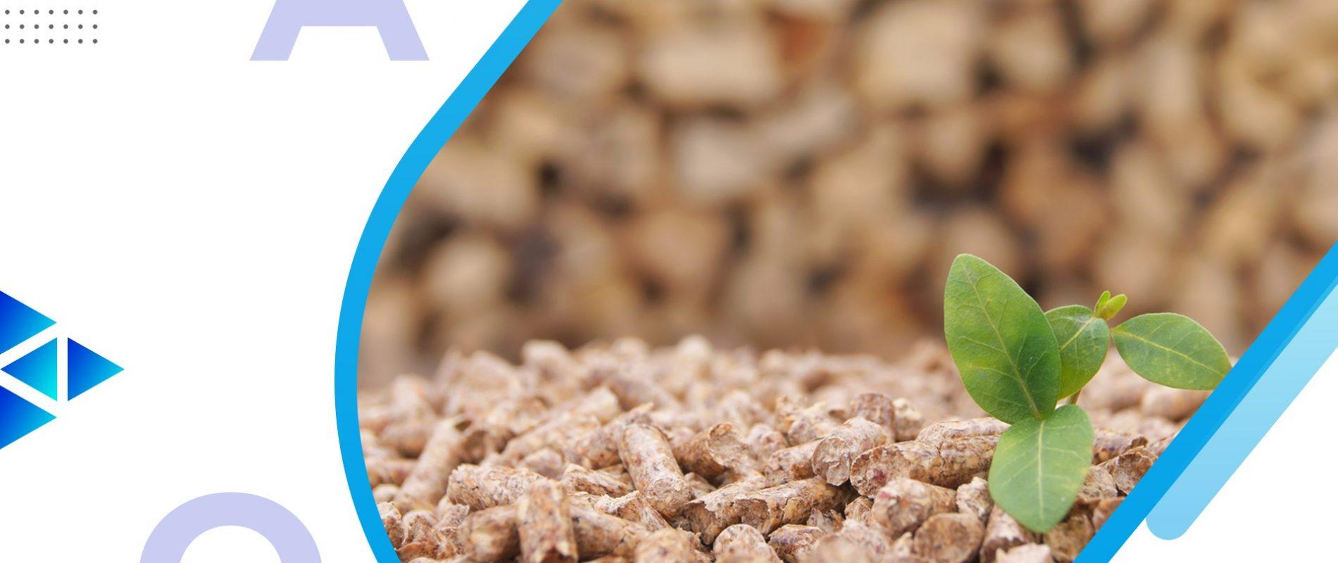고무 나무 아카시아 유칼립투스 사펠 우드 조인트 단단한 나무 나무 보드 나무 판자 목재 패널 우드 슬래브 재목 재목 목재 산업 국제 목재 제품 공급 업체 FSC 인증 수입 수출