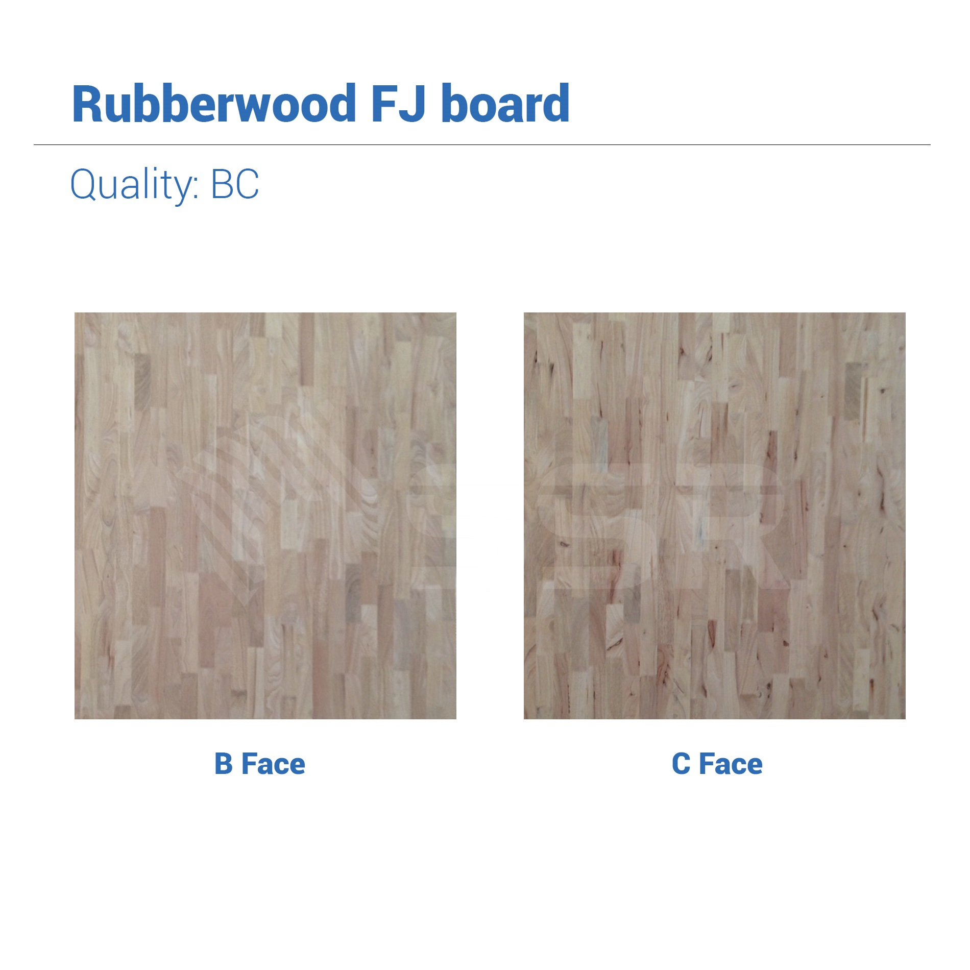 Rubberwood Solid Wood Hard Wood Wood Joint Wood Plank Wood Panel Wood Board Wood Industry International Wood Product Supplier FSC Certified Import Export
